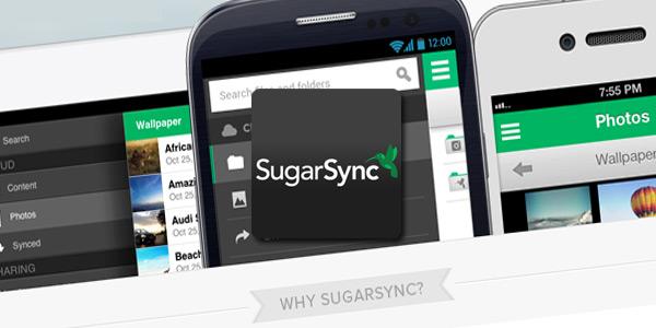 sugar sync