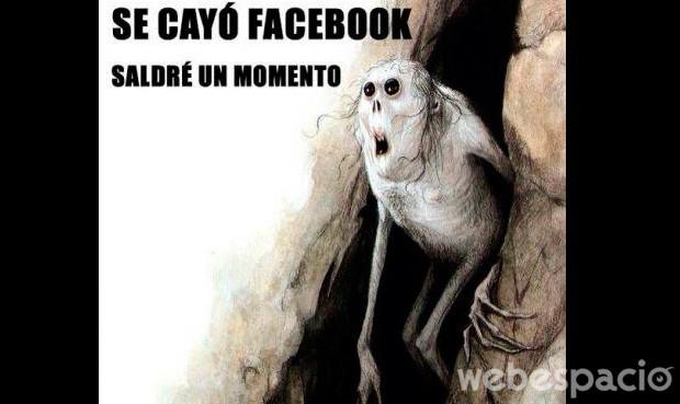 se cae facebook