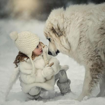 7. Perdidos en un mundo invernal