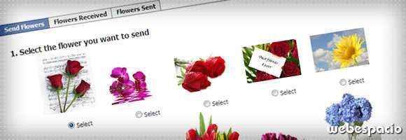 app flowers para facebook