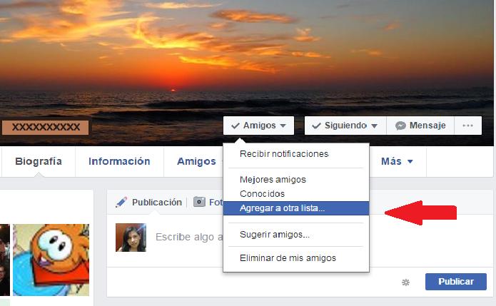 privacidad lista amigos facebook