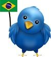 nuevo traductor brasileños en twitter