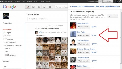 google plus ignorar