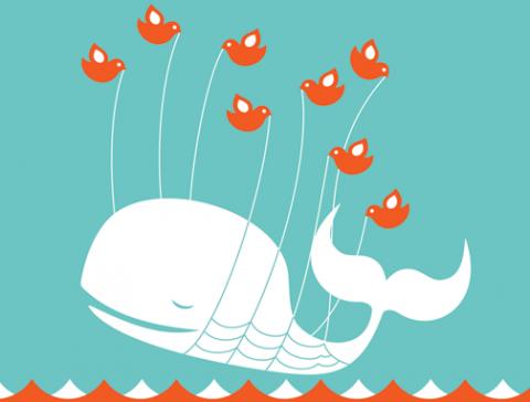 Twitter cae