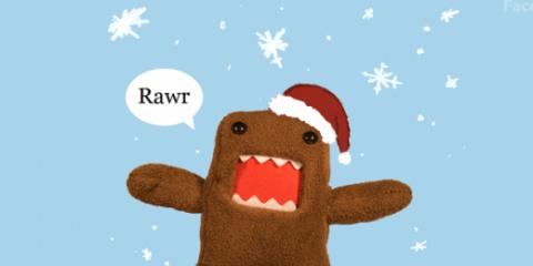 Navidad domo
