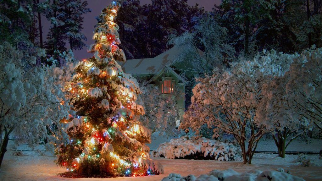 portada árbol de navidad