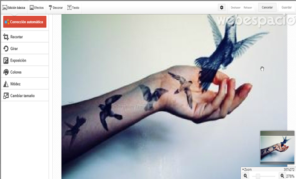 editor kit creativo de google plus