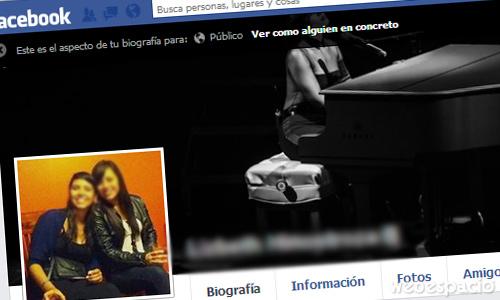 ver como ve el publico mi perfil de facebook