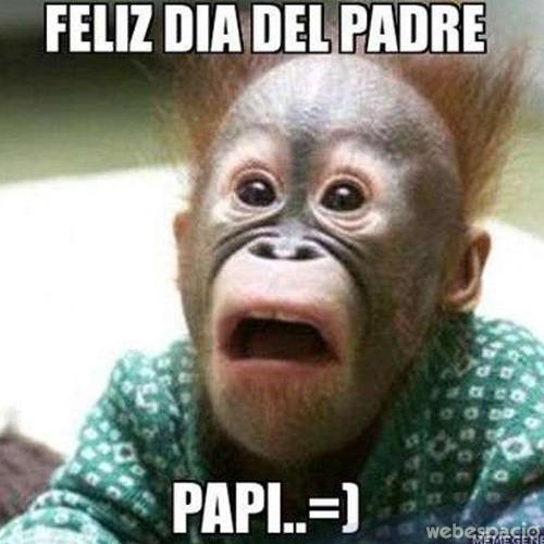 mono_dia_del_padre