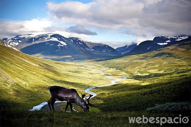 suecia-naturaleza