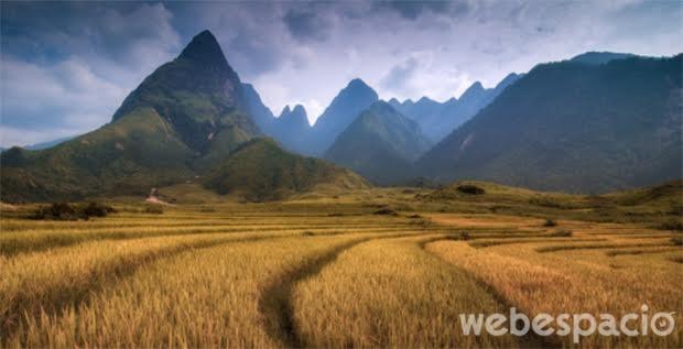 vietnam-naturaleza