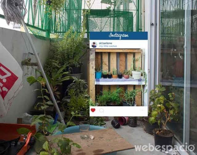 el-mejor-jardin