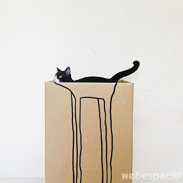 gato-con-patas-largas