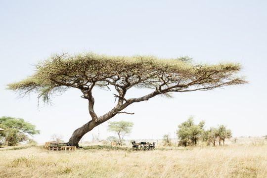 africa-del-este
