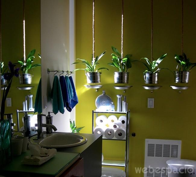 plantas-en-el-bano