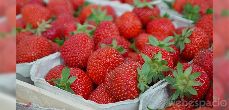 fresas alimento adictivo