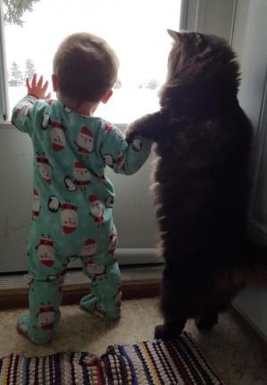 bebe y gato de la mano