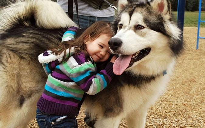 Dame un abrazo
