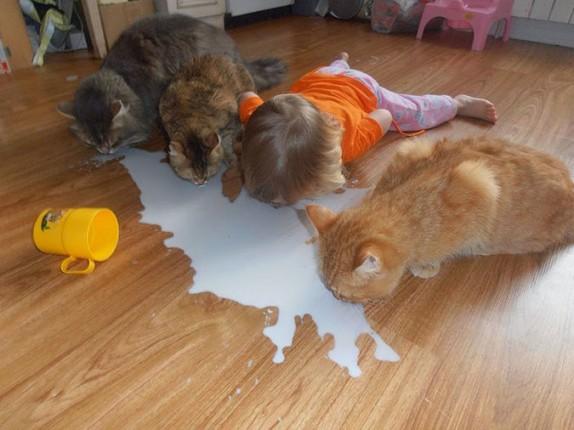 No hay que llorar sobre leche derramada, con un traguito basta
